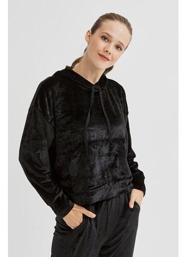 Penti Velvet Sweatshirt Siyah